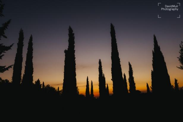 Cypruss Sunset
